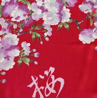 外国人に人気の桜